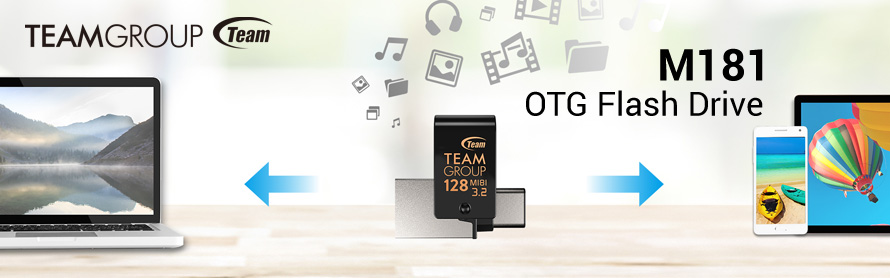 Banner Team Group M181 OTG Type-C Flashdisk USB3.2