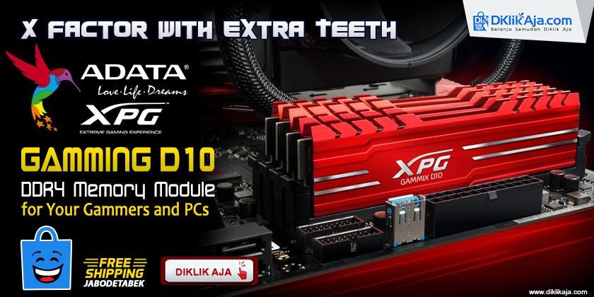 Review ADATA XPG Gammix D10 DDR4